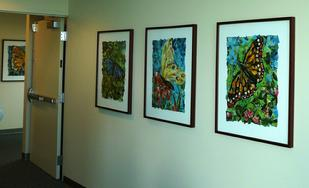 All four butterfly collage paintings in their new home at St Joseph's Hospital in Stockton, CA